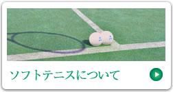 長野市ソフトテニス協会 ソフトテニスについて